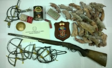 Detenzione di armi abusive e ghiri
