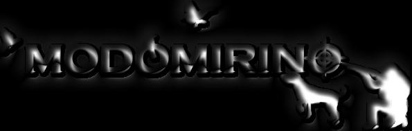 Logo Watermark Modo Mirino