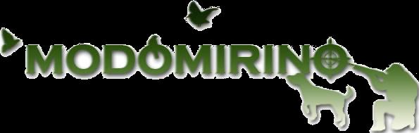 Logo Verde Modo Mirino