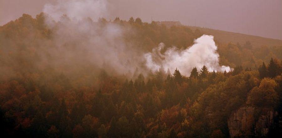 Incendi in Piemonte gli ambientalisti chiedono la chiusura della caccia
