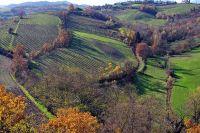 L'Emilia Romagna torna sui suoi passi sul divieto del piombo