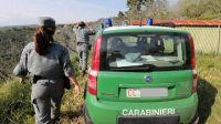 Palermo, forestale impiegata nella lotta al bracconaggio e ai richiami elettromagnetici per le quaglie