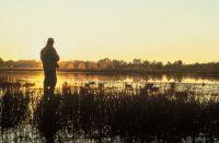 Abruzzo, il WWF si rivolge al TAR impugnando il calendario venatorio