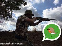 Denunciati bracconieri, utilizzavano chat WhatsApp per evadere i controlli