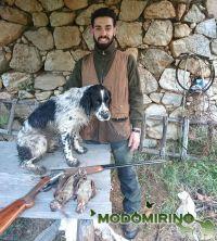 A caccia in Calabria a Beccacce col .410 e Springer