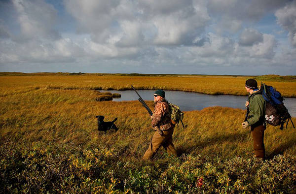 Cacciatori caccia col cane