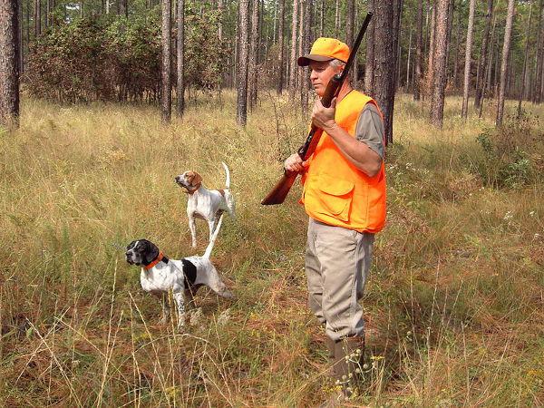 Sicurezza caccia diminuiscono incidenti