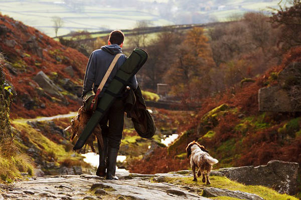 Cani Da Caccia Compagni di avventure
