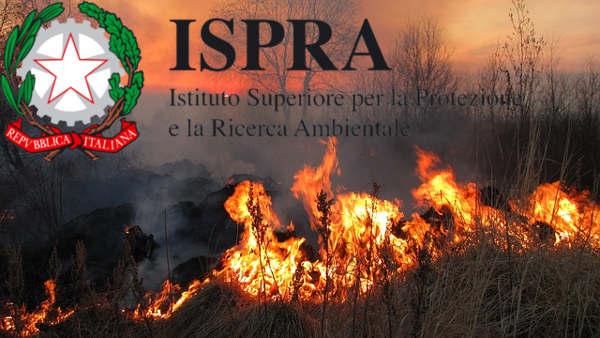 ISPRA limitazione caccia incendi